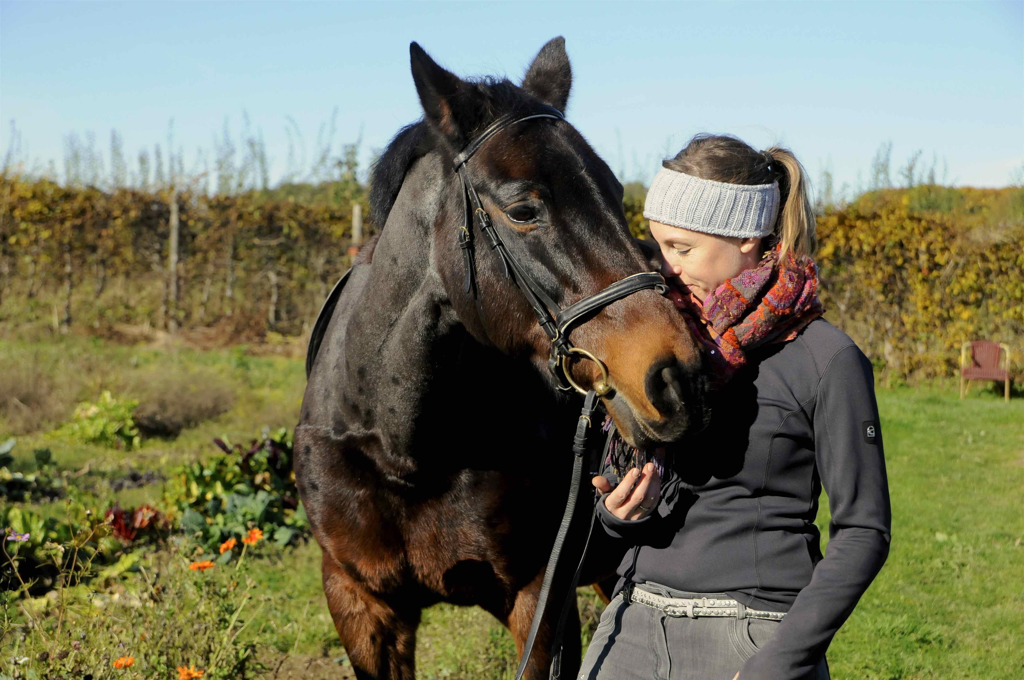 _dsc4585_cavallo_alifewithhorses