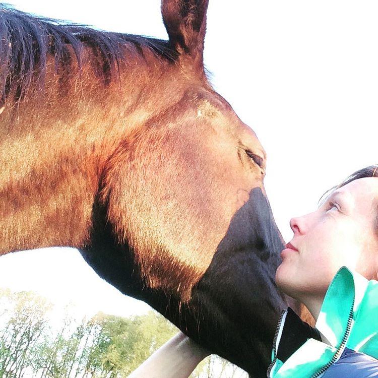 A girafe in need of hugging  riesenbaby emilia jungpferdeaufzuchthellip