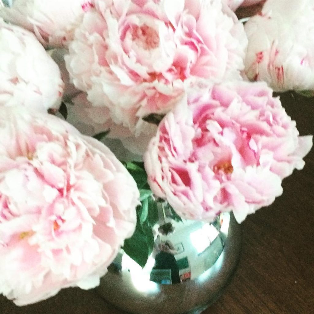An InstaStarlet but also MY favourite flower! nohorse butmylove peonieshellip