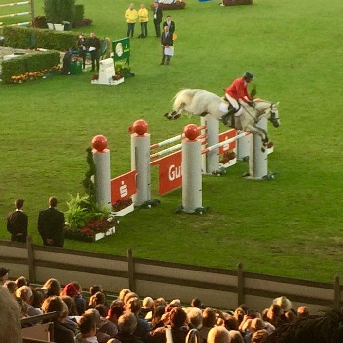 Der wunderschne Convall nofilter chioaachen nationenpreis philippweishaupt colmanfan showjumping springenhellip