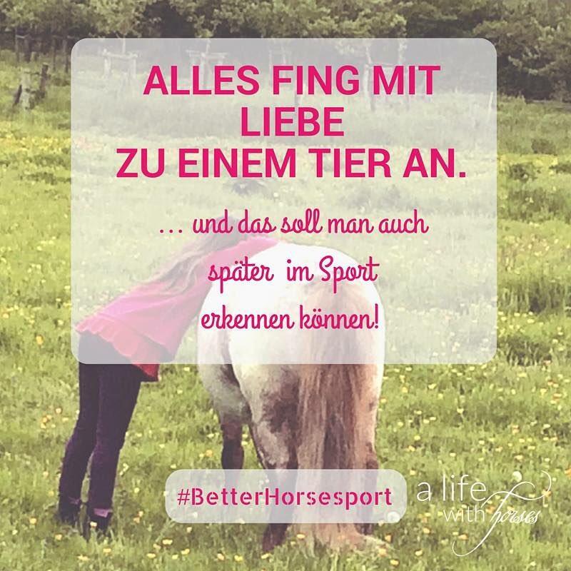 betterhorsesport  Fr besseren Turniersport Fr sichtbare Pferdeliebe ponyliebe lieblingspferdhellip