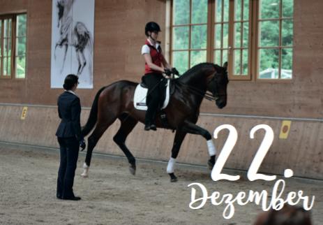 Adventskalender für Pferdefreunde von A life with horses