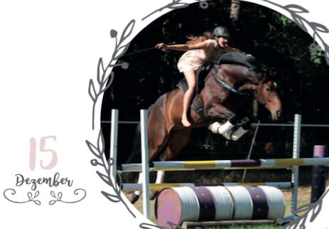 Der Adventskalender für Pferdemenschen von Alifewithhorses.de