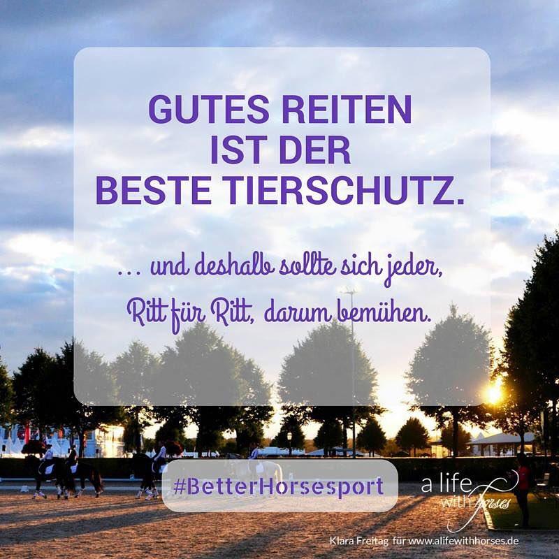 Essenz aus einem Telefonat mit Britta Schffmann Donnerstag ist betterhorsesporthellip