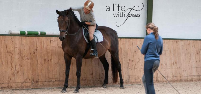 Pferd Dressur,Reithalle