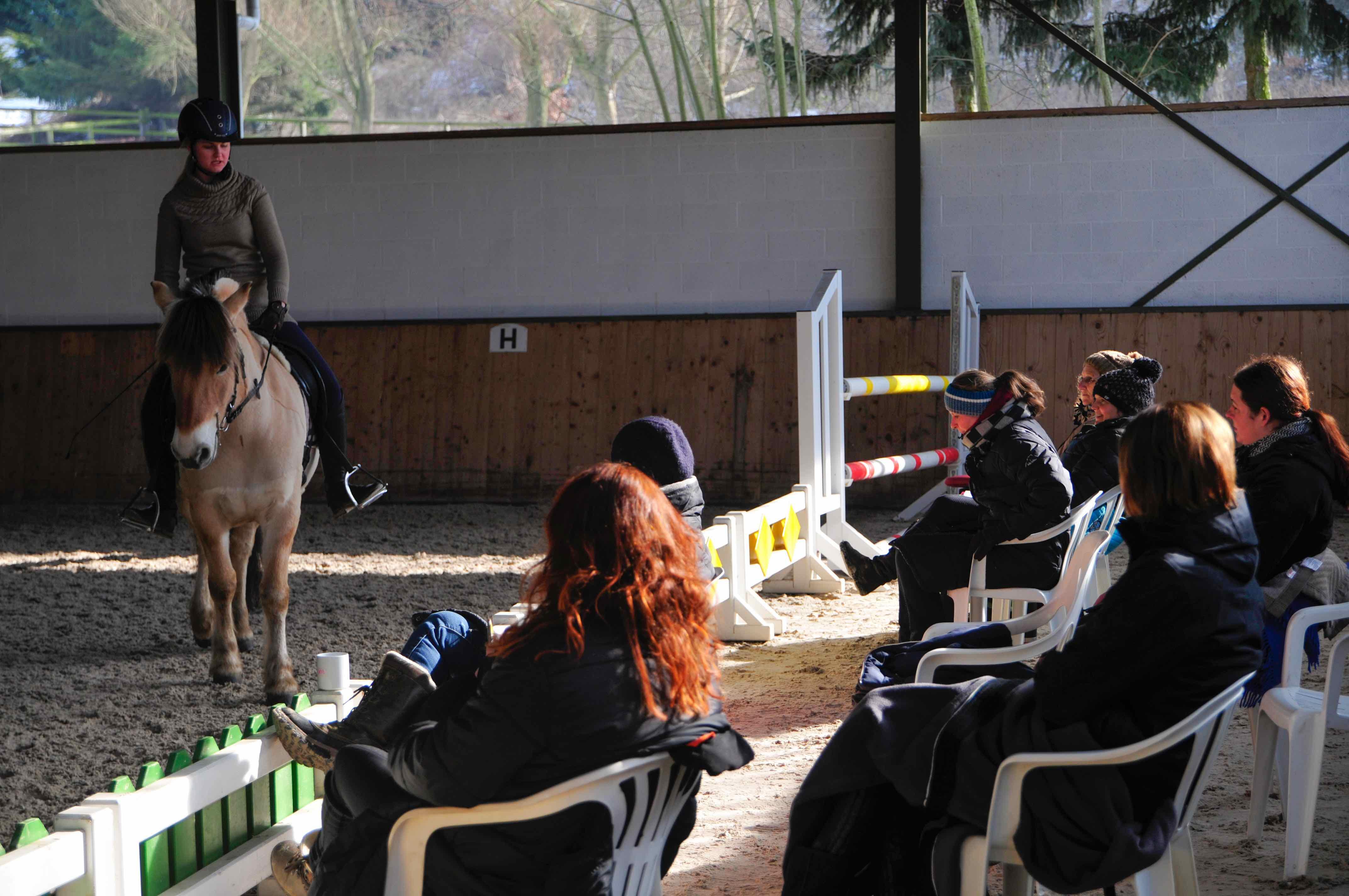 Kursbesucher schauen in einer Reithalle einer Reiterin zu
