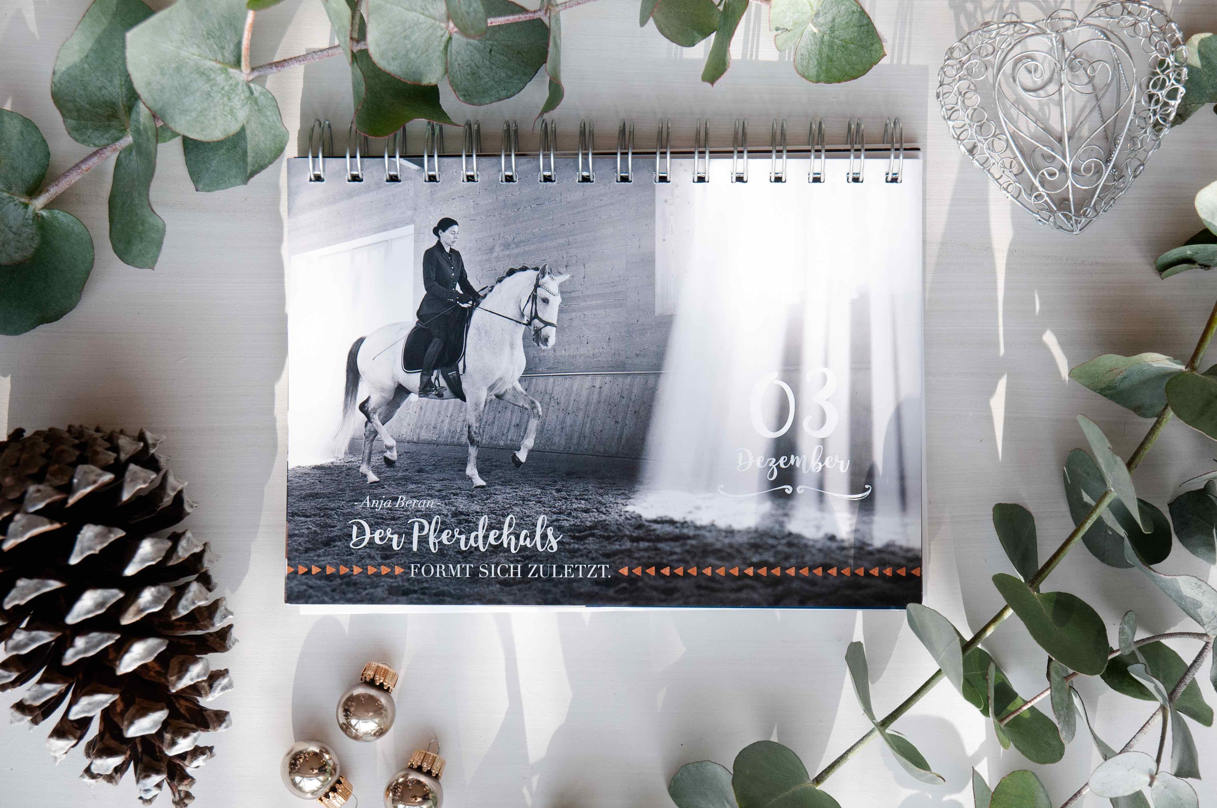 Bild von Anja Beran im Adventskalender für Pferdemenschen
