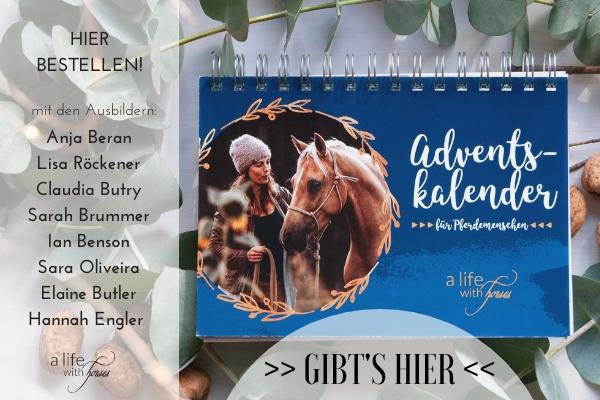 Adventskalender für Pferdemenschen