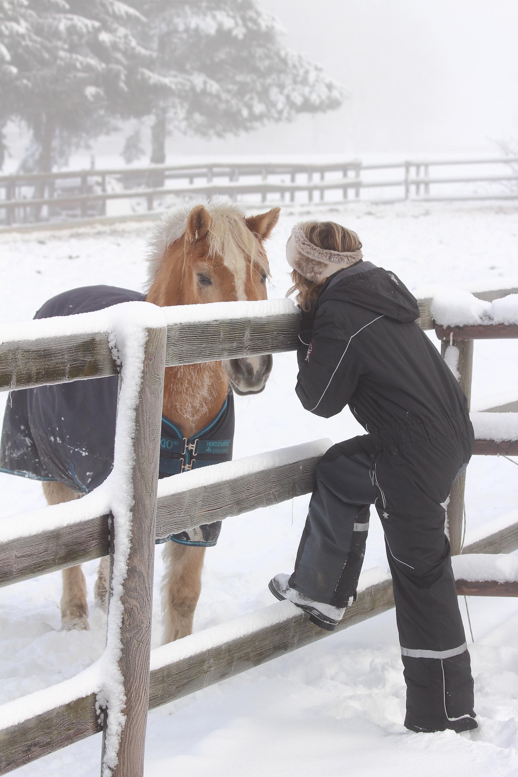 Haflinger im Schnee, davor Frau mit Krämer Reitanzug Aki
