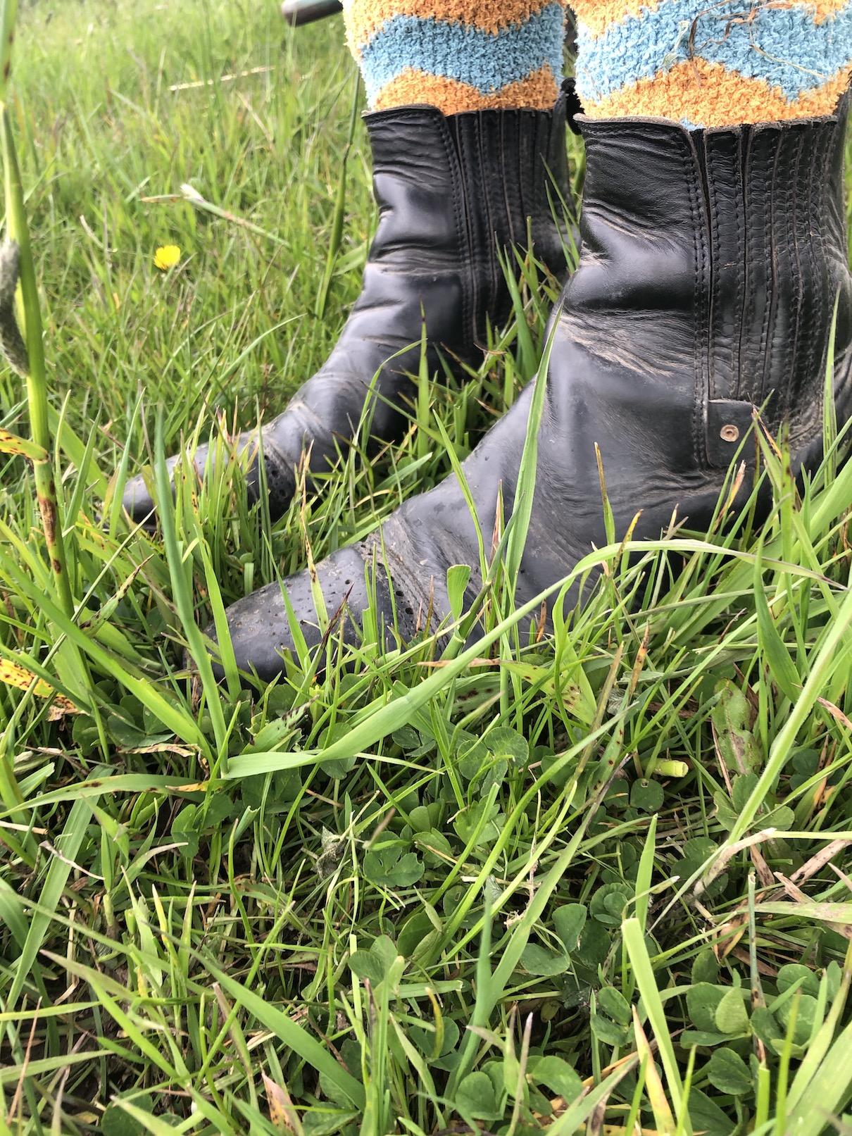 Schuhe auf Pferdewiese, Gras kurz, Pferdefutter
